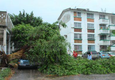 Sorpresiva lluvia deja afectaciones
