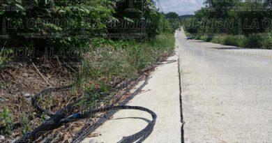 Cable Telmex
