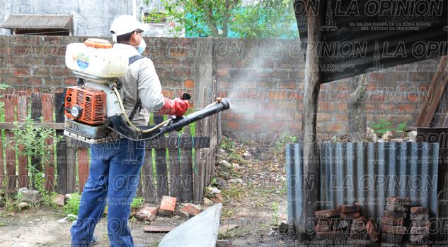 Fracasa lucha dengue