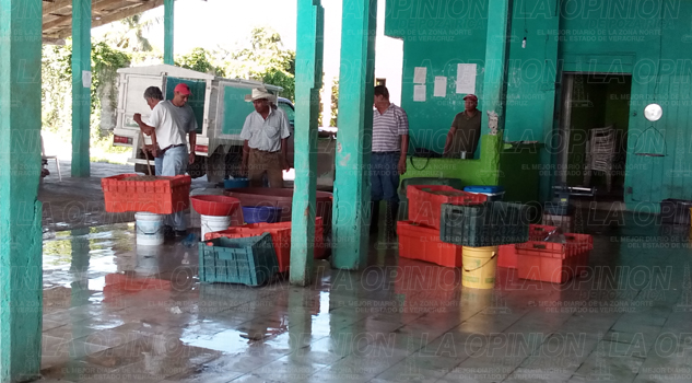 pescadores-esperan-apoyos-de-empleo-temporal