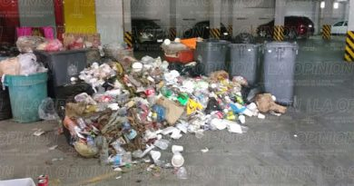 Recrudece problema basura