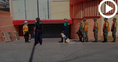 simulacros-proteccion-civil