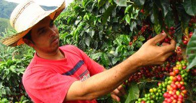 urgen-recursos-al-sector-agricola