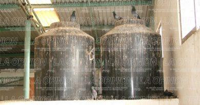 fetidos-olores-en-el-mercado-de-tamiahua