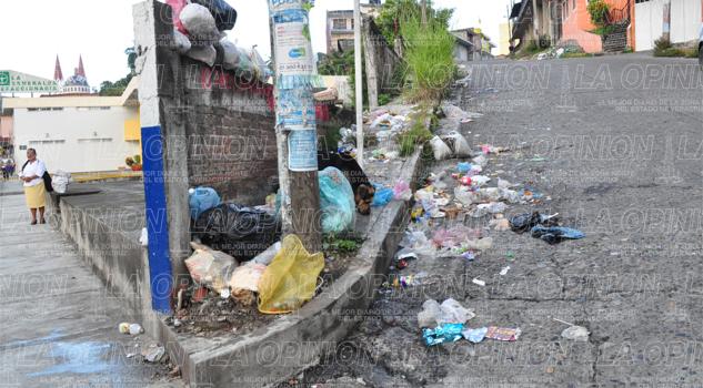 persiste-el-problema-de-basura