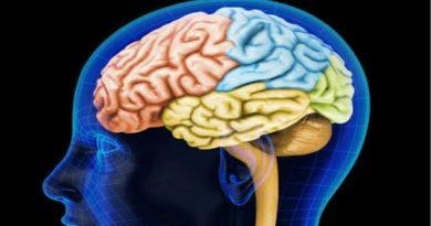 Las estrategias del cerebro al envejecer