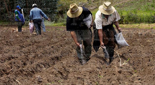 bajo-presupuesto-agobia-a-productores