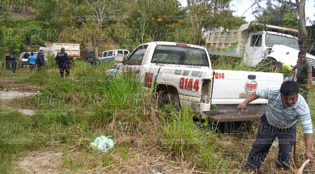 combaten-criaderos-del-mosco-del-dengue