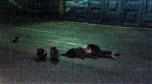 se-mata-mujer-en-moto