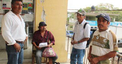 Denuncian el robo de ganado en La Ceiba