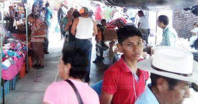 Despunta economía en Tamiahua