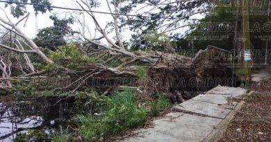 Estela de destrucción en la zona costera de Tuxpan