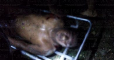 Identificaron cadáver que estaba bajo un puente