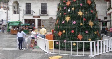 vandalizan-pino-navideno-en-centro-historico
