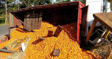 vuelca-camion-torton-con-16-toneladas-de-naranjas
