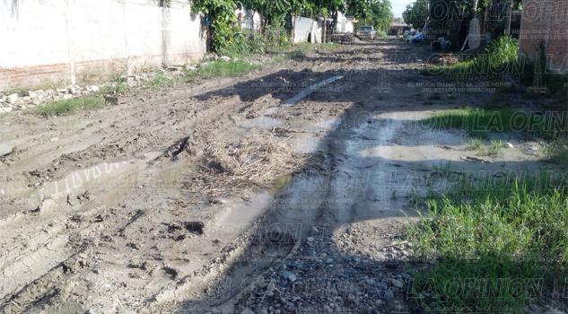 Calles insalubres en la colonia Arboledas
