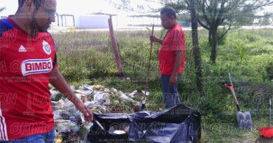 Limpian zona costera de Tamiahua