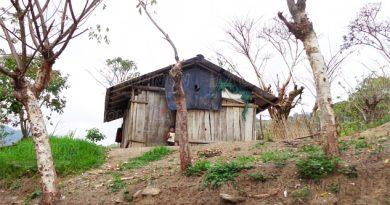 Sin apoyo los 8 DIF municipales del Totonacapan
