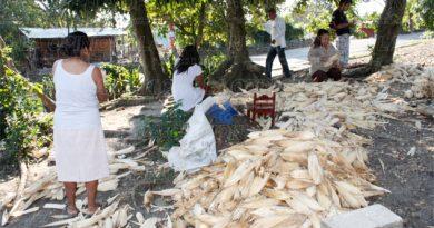 Cierran frontera a hoja de maíz