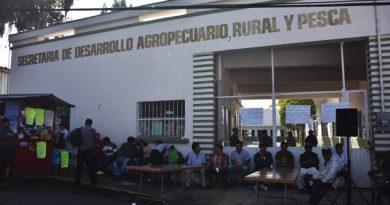 Detectan desvío de más de mil millones de pesos en la Sedarpa