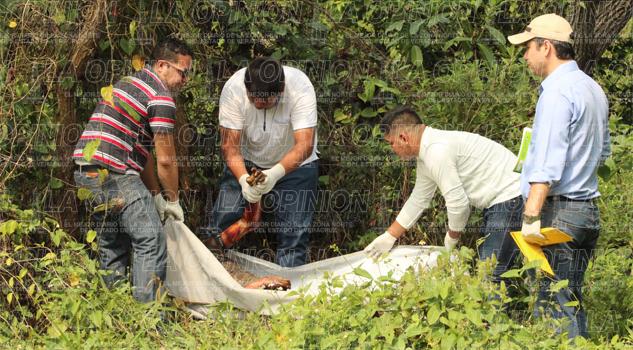 Hallan a otro ejecutado en Escolín de Olarte, Coatzintla