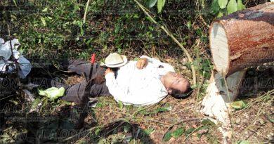 Murió aplastado por un árbol