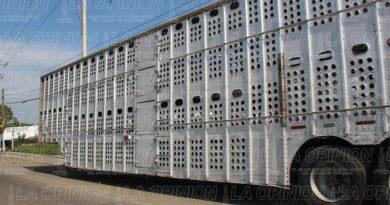 Parados, más de mil camiones de carga