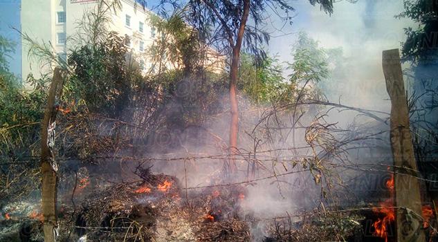 Pastizal Llantas Prenden Fuego