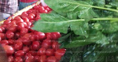 Sorprende baja de precio de tomate