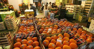 Tres puntos para que el sector agroalimentario disminuya dependencia de EU