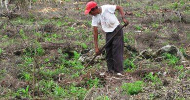Urge plan ambicioso en el agro