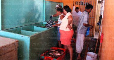 Vendedores de pescado y mariscos no suben precios