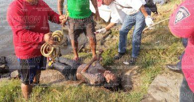 Cadáver de mujer flotaba en el río de Tuxpan