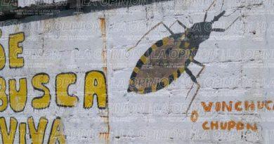 """Contra la """"besucona"""""""