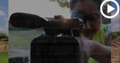 Exposición de Cine en Cumbre Tajín
