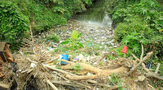 Arroyo del Hueleque taponado
