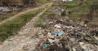 Basurero clandestino en Xico, afecta a familias