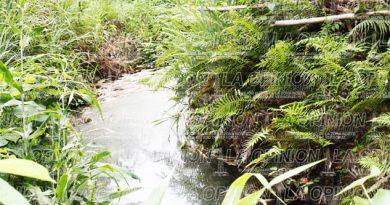 Otro derrame en Zapata; cultivos afectados