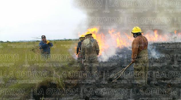 Personas causan ola de incendios