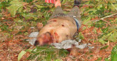 Trágico accidente en la Tlapacoyan-Martínez