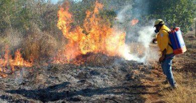Aumentan incendios en la Sierra del Totonacapan