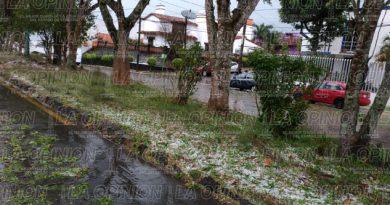 Daños menores tras turbonada en Xalapa