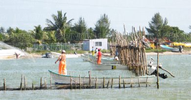 Paran pesca; tres vedas en este mes