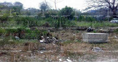 Pemex abandona terrenos