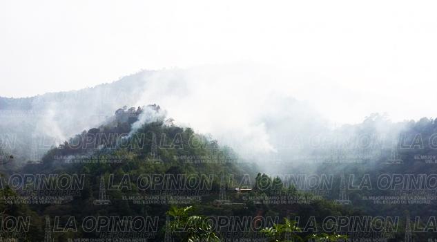 Reportan 164 incendios forestales
