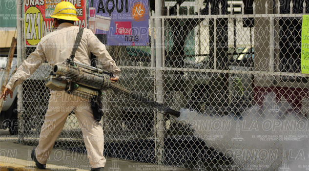 Reportan seis casos de dengue