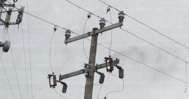 Rompe cables de CFE tras derribar un árbol