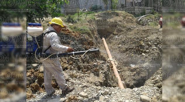 Sin reportes de dengue en zona rural y urbana