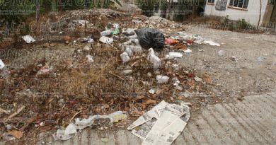 Surgen basureros en varios sectores