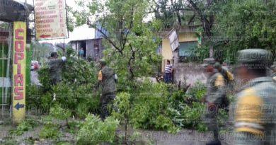 Tras tormenta fue implementan plan DN-III l en Tuxpan